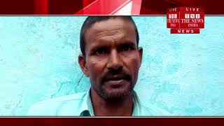 [ Rampur ] रामपुर में भैसे ने मालिक की ली जान / THE NEWS INDIA