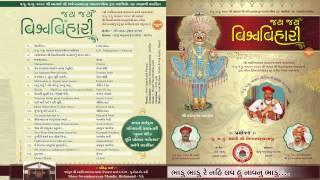 Swaminarayan Kirtan Bhadu Bhadu re ( Jay Jay Vishva Vihari) Kirtan