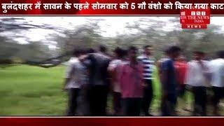 [ Bulandshahar ] बुलंदशहर में सावन के पहले सोमवार को 5 गौ वंशो को किया गया काटन