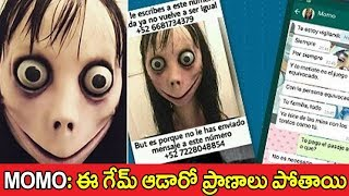 What is the Momo   Another Blue Whale Game Telugu