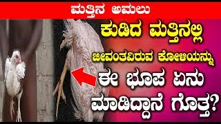 ಕುಡಿದ ಮತ್ತಿನಲ್ಲಿ ಜೀವಂತವಿರುವ ಕೋಳಿಯನ್ನು ಈ ಭೂಪ ಏನು ಮಾಡಿದ್ದಾನೆ ಗೊತ್ತ | #Kannadanews