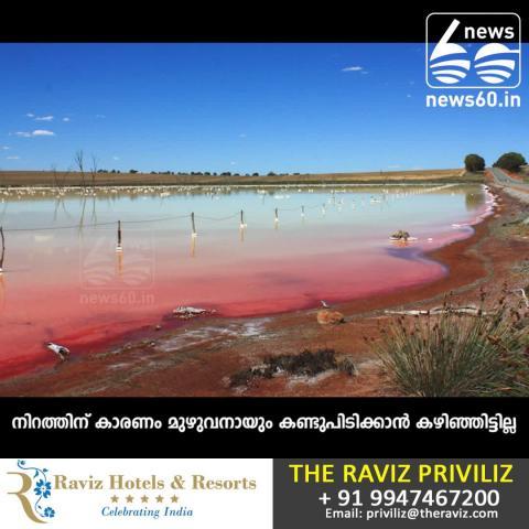 heller lake: pink lake