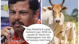 Raja singh nae Ugla | Zaher Eid Mai Gau Rakshak Nahi katnae Dengae Gai Bail or bachda - DT News