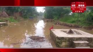 [ Bijnor ] बिजनौर में रामगंगा नदी में अचानक आई बाढ़ से रामशरण गौशाला की 105 गायें फंसी