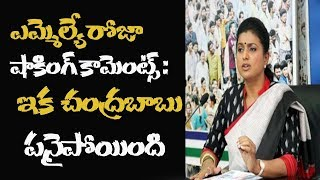 YCP MLA Roja Sensational Comments On AP CM Chandrababu Naidu | Roja Strong Warning To Cm Chandrababu