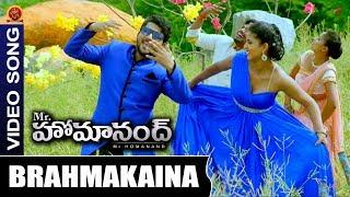 Mr Homanand Movie Full Video Songs | Bramha Kaina Full Video Song | Pavani | Priyanka