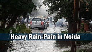 Delhi NCR/Noida में जमकर बारिश। Heavy Rain-Pain in Noida