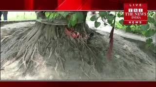 [ Kusinagar ] कुशीनगर में 8 सालमासूम की तंत्र-मंत्र के चक्कर में की हत्या / THE NEWS INDIA