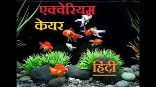 AQUARIUM CARE TIPS |Hindi&Urdu| , Benefits of aquarium in home, Aquarium or vastu shastra