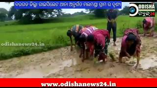 Road Damage # Cover with Mud # cultivate on road by people