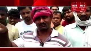 [ Ballia ] बलिया में जहरीले पानी से बेजुबान 10 गाय  की मौत / THE NEWS INDIA