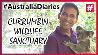Harsha Bhogle's Tour to Australia | Currumbin Wildlife Sanctuary | #Australia Diaries