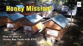 Honey Mission! | How to Start a Honey Bee Farm with KVIC | Satya Bhanja