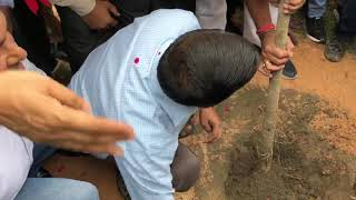 Delhi CM Arvind Kejriwal Launches the Mega Tree Plantation Drive Van Mahotsav