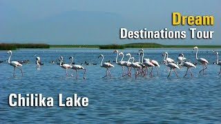 Chilika Lake: Dream Destinations Tour | Odisha, India | Satya Bhanja