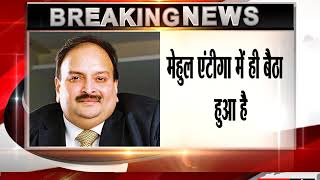 From Antigua Hideout, Mehul Choksi Frets About Employees, Shareholders