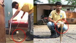 Big Cobra Snake Rescue Operation From Bhadrak, Odisha | Snake Rescuer Pramid Kumar