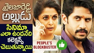 Sailaja Reddy Alludu Collections Vs Sailaja Reddy Alludu Review | Shailaja Reddy Naga Chaitanya