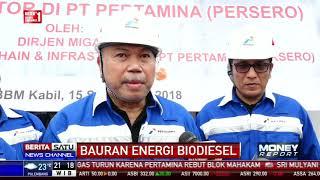 Kebijakan Bauran Biodiesel Temui Sejumlah Kendala