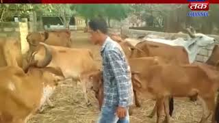 Vishavadar :  programme  organized of cow's importance in scientific way