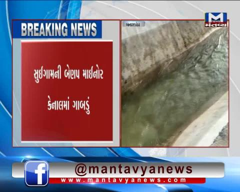 Banaskantha: Canal sinkhole issue is still unsolved