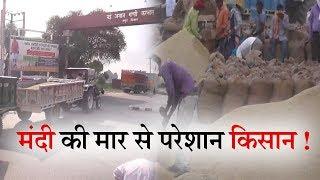 धान की फसल सस्ते में बेचने को मजबूर किसान II ANV NEWS
