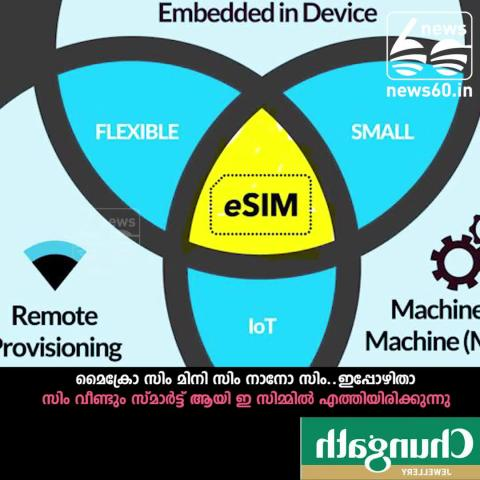 what is e-sim technology