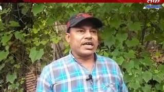 Valsad : he leopard  is found in Kosamba village