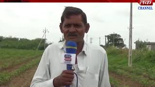 Morbi : In the Morbi diocese worrying farmer class raining