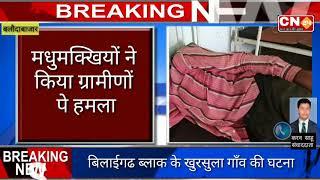 CN24 BREAKING - रोजगार गारंटी योजना मे काम कर रहे ग्रामीणों पर मधुमक्खियों ने किया हमला..