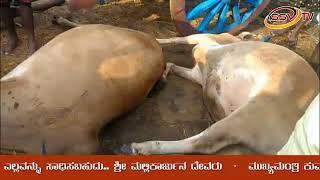 SSV TV NEWS 27 09 18 2