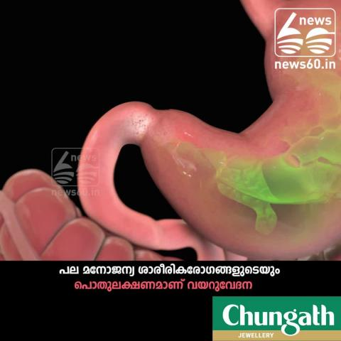 STOMACH PAIN- REASON FOR MANY DISEASE