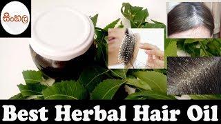 Best Herbal Hair Oil /කොන්ඩෙ ඉක්මනින්ම වැවෙන ඖෂධීය තෙල්
