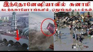 இந்தோனேஷியாவில் சுனாமி அதிர்ச்சி வீடியோ |  Watch Shocking videos