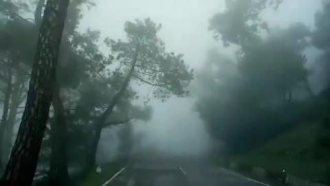 Cantt Area | Dharamshala | vid : Bhushan