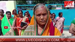 Speed News : 04 Oct 2018 || SPEED NEWS LIVE ODISHA
