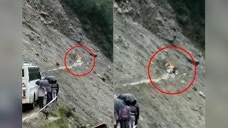Badrinath Route में Landslide की डराने वाली तस्वीरें Camera में हुई कैद | Tavera Car बन गई 'कबाड़'