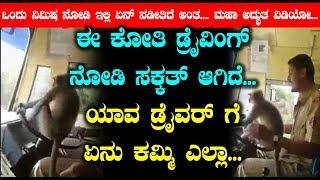 ಬಾರತದಲ್ಲೇ ವೈರಲ್ ಆಗ್ತಿರುವ ವೀಡಿಯೊ | Monkey Driving Bus Viral Video | Top Kannada TV