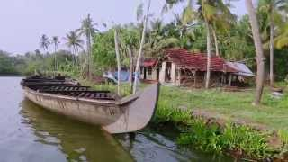 A Billion & One Voices: The Story of Boatman Ravi