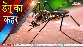 भरतपुर के बयाना में डेंगू का डंक । Dengue Fever in Bharatpur । IBA NEWS