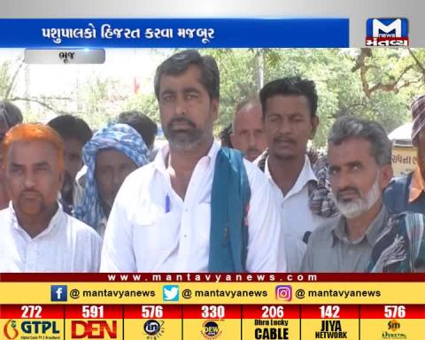 Scarcity of the food & water for animals in Bhuj | Mantavya News