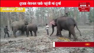 [ Lakhimpur ] लखीमपुर खीरी के दुधवा नेशनल पार्क पहुंची मां दुर्गा, इलाके में खुशी का माहौल