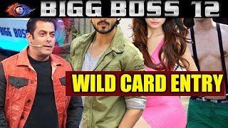 4 Wildcard Entries To Enter Bigg Boss House   Bigg Boss 12 Latest Update