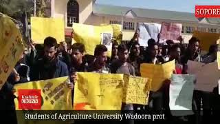 Students of Agriculture University Wadoora protest against civilian killings