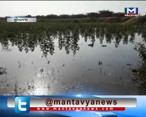 Surendranagar: Sinkhole occurred in the canal | Mantavya News