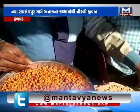 Halvad: Mites found from the Grains of Mid day Meal | Mantavya News