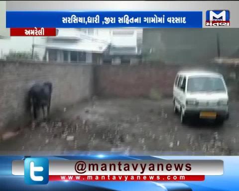 Rain along with heavy wind and lightning lashes Amreli   Mantavya News