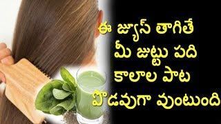 ఈ జ్యూస్ తాగితే మీ జుట్టు పది కాలాల పాటు పొడవుగా వుంటుంది   Telugu Health Tips   Home remedy