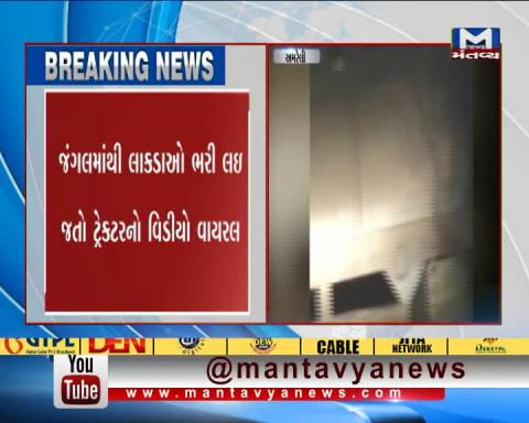 Viral Video of the Wood Smuggling of Amreli | Mantavya News