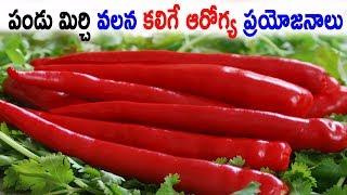 పండు మిర్చి వలన కలిగే ఆరోగ్య ప్రయోజనాలు | Health benefits of fruit chilli | Health Tips |